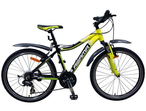 Xe đạp thể thao Asama MTB 2401