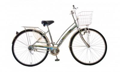 Xe đạp Martin @ XI